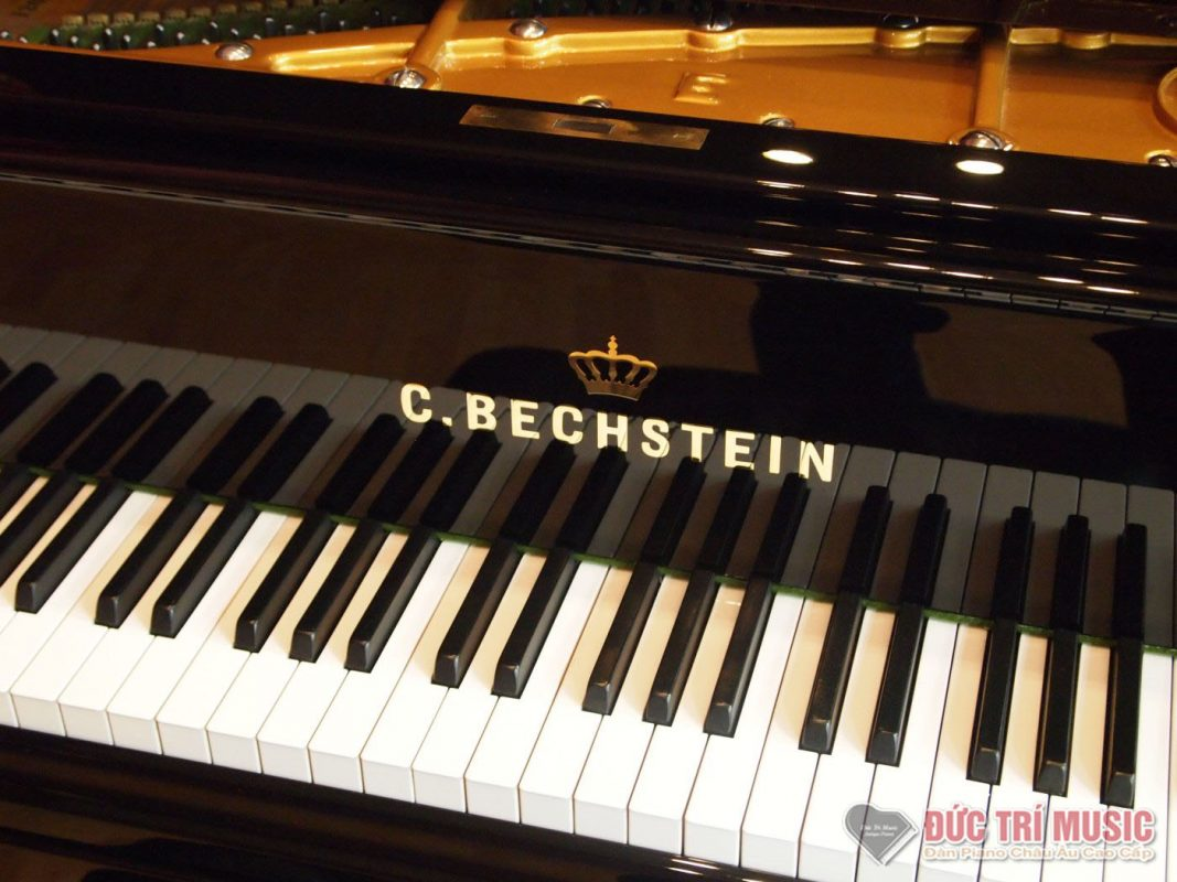 BECHSTEIN-piano-ductrimusic