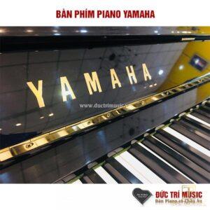 phím đàn piano yamah u3m