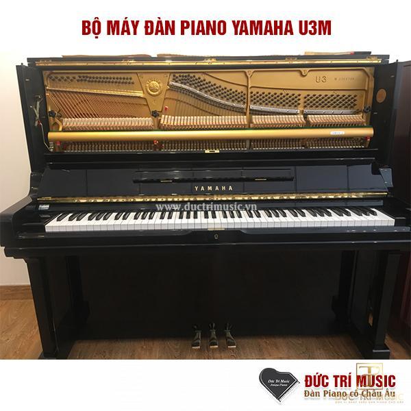 bộ máy đàn piano yamah u3m