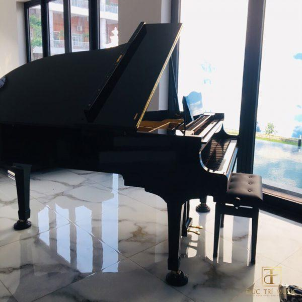 đàn piano grand yamaha g5e - 2