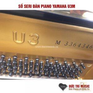 số seri của đàn piano yamah u3m