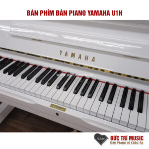 ban-phim-dan-piano-yamaha-u1h-pianoductrimusic