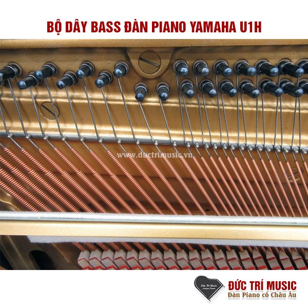 bo-day-dan-piano-yamaha-U1h-pianoductrimusic