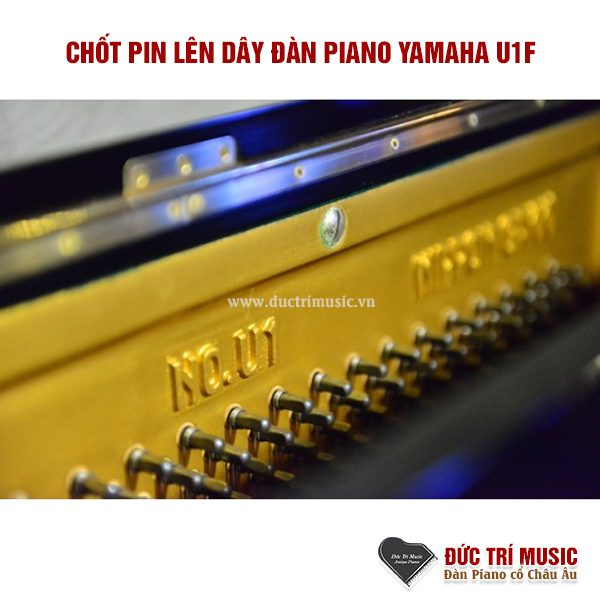 chot-pin-len-day-dan-piano-yamaha-u1f-pianoductrimusic
