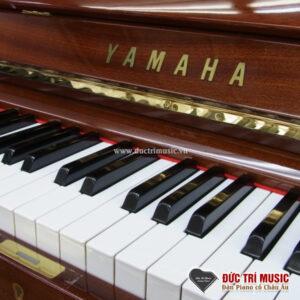 logo-yamaha-u2h-walnut-tai-duc-tri-music