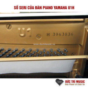 so-seri-dan-piano-yamaha-u1h-mau-trang-tai-duc-tri-music-pianoductrimusic