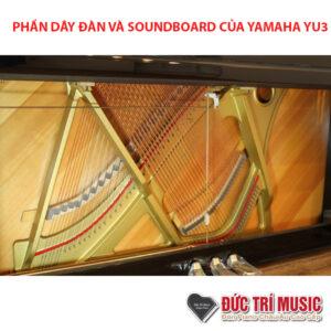 dây và soundboard của yamaha yu3