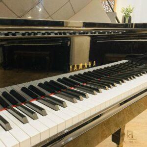 Đàn piano yamaha c7 - 6