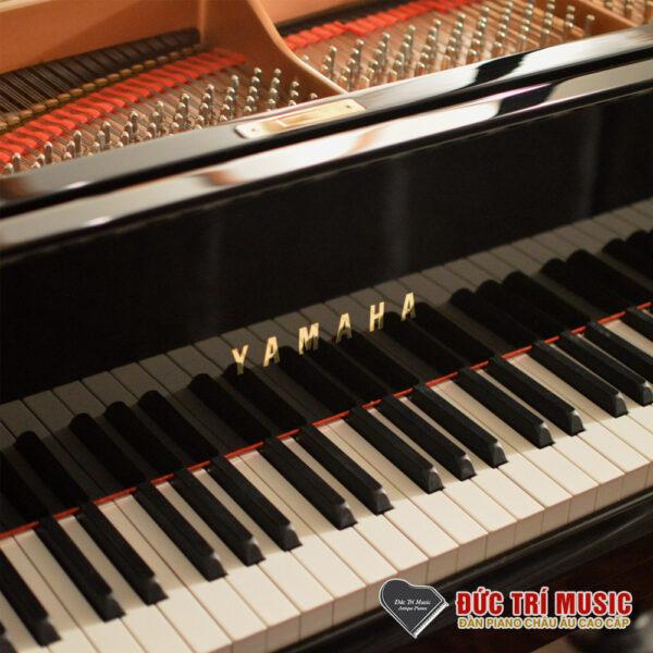 thương hiệu đàn piano yamaha c7x