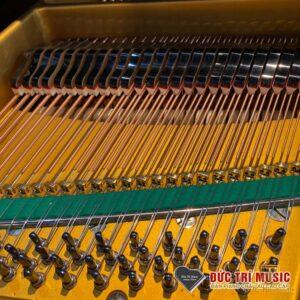 Dải âm bass của đàn Grand Piano Yamaha G3