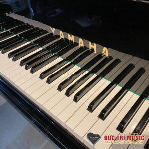 Bàn phím đàn piano yamaha g3