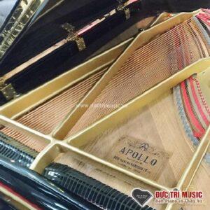 Đàn grand piano Apollo A35 - 2